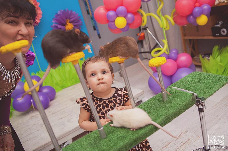 Игра задания для дня рождения ребенку